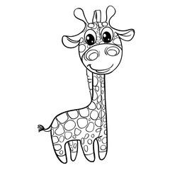 Outline baby giraffe