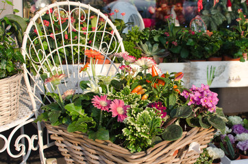 A fancy market with flowers in baskets and nice decorations.