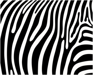 Print pattern, skin of zebra, vector illustration