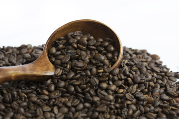 Roasted Whole Coffee Bean Selected focus