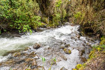 Water creek in Papayacta, Ecuador