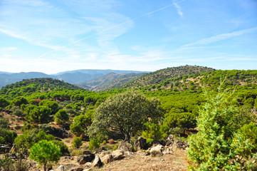 Sierras de Andujar Natural Park, Jaén, Andalusia, Spain
