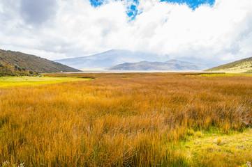 Beautiful nature  of the Cotopaxi National Park, Ecuador