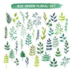 Vector watercolor floral set. Big green floral collection.