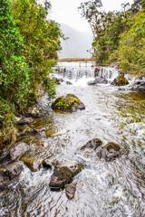 Creek of the Cajas National Park (Parque Nacional Cajas), a national park in the highlands of Ecuador