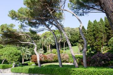 Garden of a villa at Levano on Liguria
