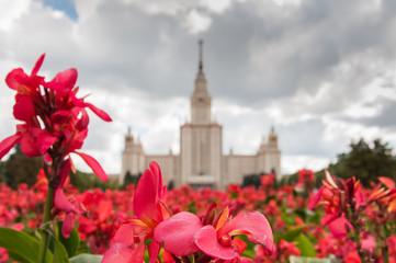 Lomonosov Moscow State University. Selected focus on flowers.