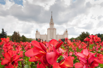 Lomonosov Moscow State University. Selected focus on flowers.