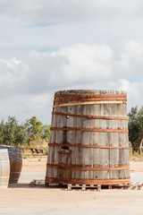 Cuba y barriles de madera al sol