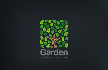 Abstract Green Tree Logo Square shape design vector template. ..