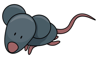 Baby mouse