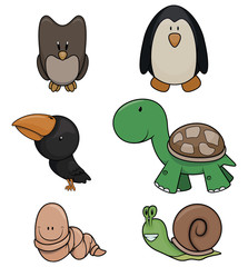 Cute animal collection : Owl,Penguin,Raven,Turtle,Worm and squirell