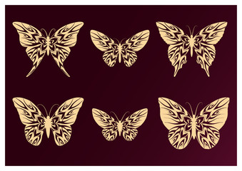 Set of butterflies on burgundy background