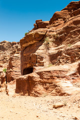 Rock and nature in Petra (Rose City), Jordan. The city of Petra was lost for over 1000 years. Now one of the Seven Wonders of the Word