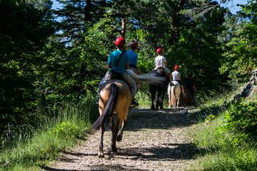 Papiers peints Equitation Equitation