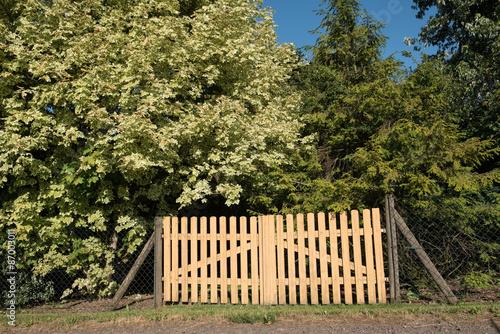 Zaun Aus Holz Umrahmt Von Baumen Stock Photo And Royalty Free
