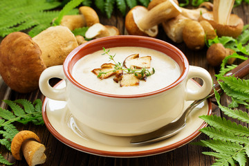Delicious soup puree with wild mushrooms.