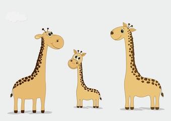 A family of cartoon giraffes
