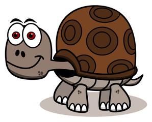 smiling brown turtle