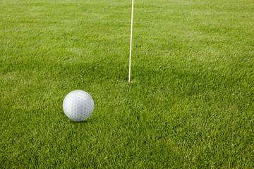 Golfball auf Golfrasen