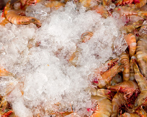 Shrimps in ice