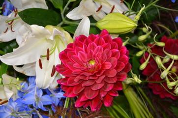 Bunter Blumenstrauß mit Dahlien und Lilien