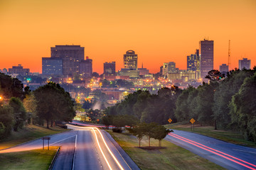 Columbia SC Skyline Wall mural