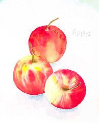 apples'watercolor painted
