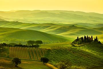Photo sur Plexiglas Jaune de seuffre Tuscany hills