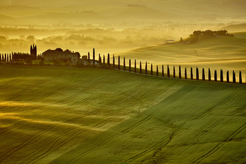 Photo Blinds Honey Tuscany hills