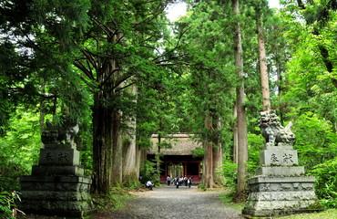 長野県 パワースポット 戸隠神社 奥社の参道