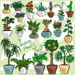 Indoor Plants, set