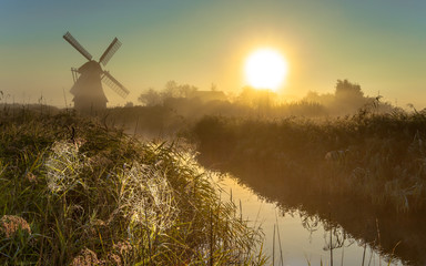 Wall Mural - Windmill in marshland with cobwebs