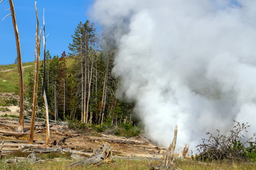 Active geyser in Yellowstone National Park