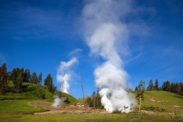 Active geysers in Yellowstone National Park