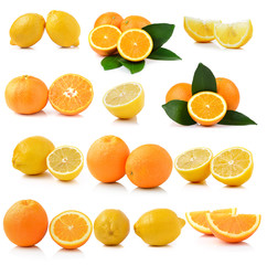 Fresh lemon and Orange fruit on white background