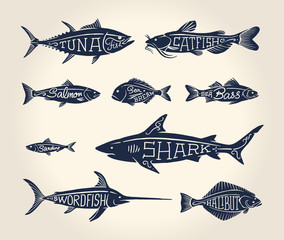 Vintage illustration of fish with names