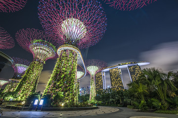 SINGAPORE-JAN 30: Day view of The Supertree Grove, Cloud Forest