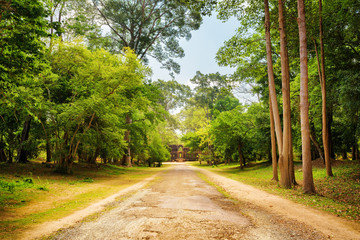 Road through rainforest in Angkor Wat. Siem Reap, Cambodia