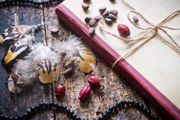 Corded book with beads, dogrose, pine nuts and earrings with feathers