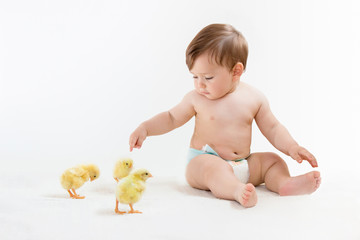 Baby boy in diapers points his finger at cute chicks, playing on an isolated white, horizontal orientation.