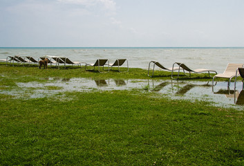 seaside resort, chaise longue, black sea, grass, trees Georgia, dog