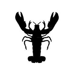 krabbe/Hummer