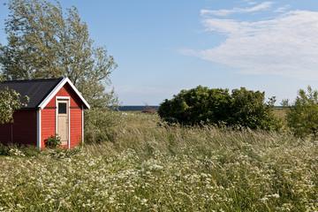 Rotes Schwedenhäuschen im Frühling