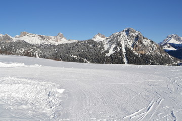 ski and winter