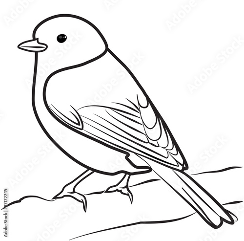 coloring pages robin tree - photo#45