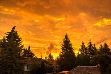 Sunrise in June