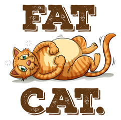 Fat cat with text