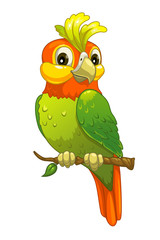 Funny cartoon parrot
