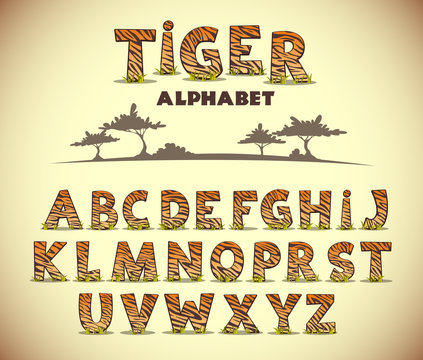 Tiger alphabet, vector font with wild pattern